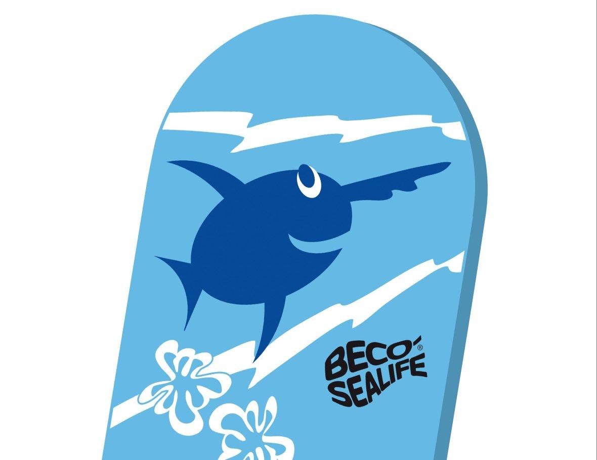 Blue Kickboard