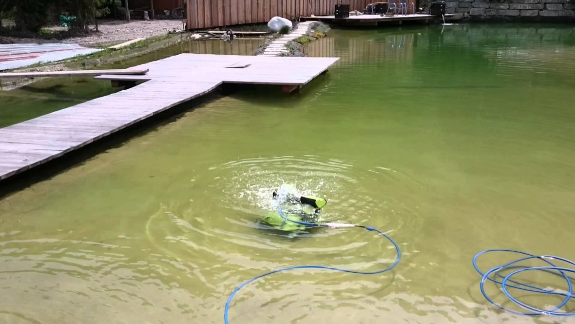 Pool cleaner Dolphin Bio Suction